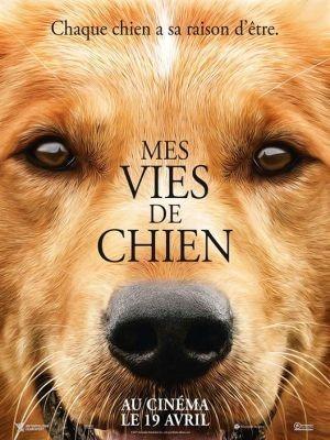 Mes vies de chien / Lasse Hallström (réal) | Hallström, Lasse. Metteur en scène ou réalisateur