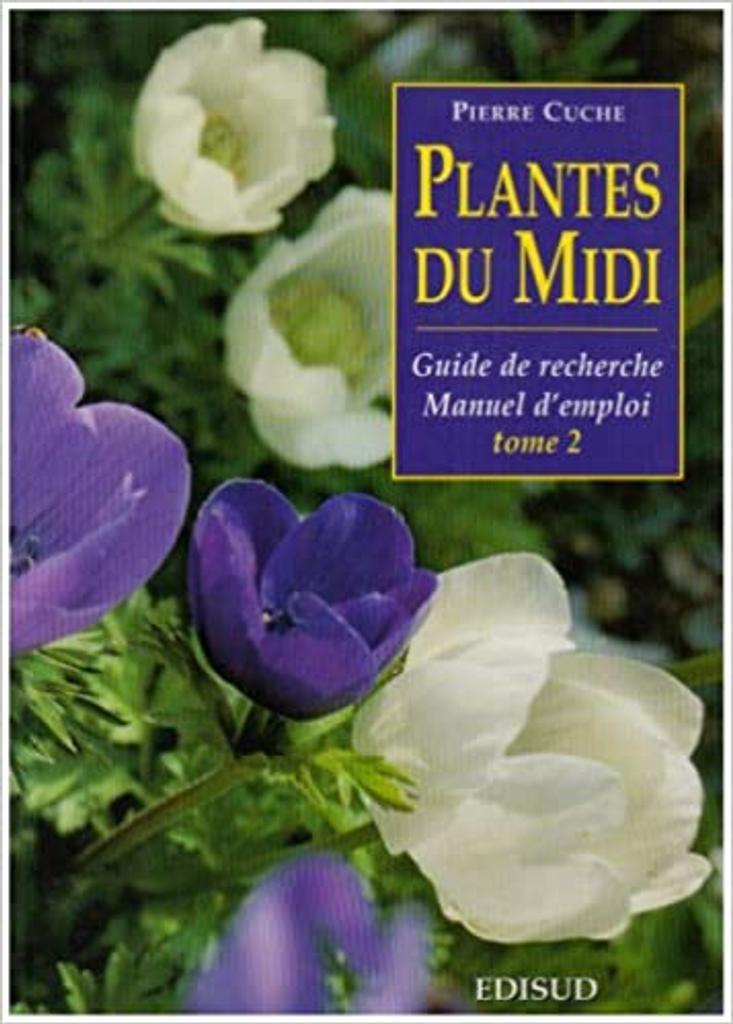 Plantes du Midi : guide de recherche, manuel d'emploi. 2, Plantes vivaces et plantes à bulbe / Pierre Cuche | Cuche, Pierre. Auteur