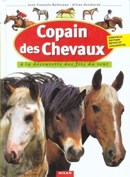 Copain des chevaux / Jean-François Ballereau   Ballereau, Jean-François. Auteur